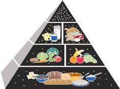 le calorie degli alimenti tabella tabelle apporto calorico giornaliero