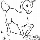 Horse Miniature Coloring Pages Getcolorings sketch template