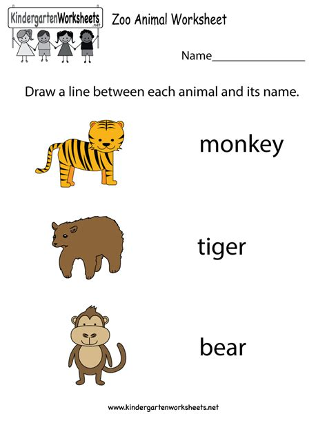 zoo animal worksheet  kindergarten learning
