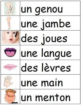 Mes premiers mots - Basic French Vocabulary Word Wall ...