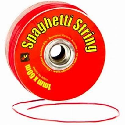 String Spaghetti Ec Supplies 1mm Skout Officemax