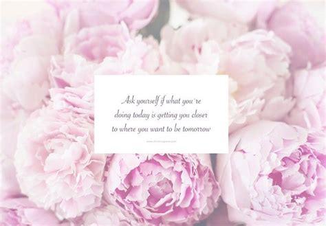 fresh petals peony desktop wallpaper wallpapersafari