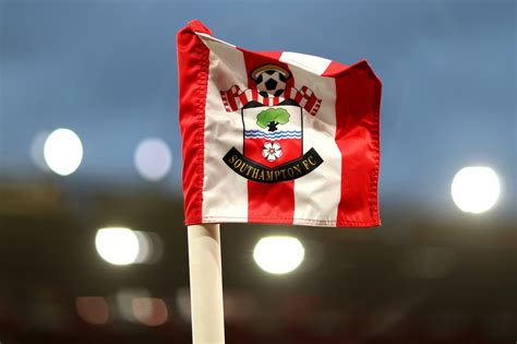 Southampton vs Newcastle Tips and Odds – Matchday 8 EPL ...