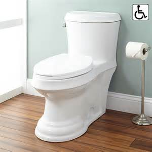 at toilette skyla dual flush one elongated siphonic toilet bathroom