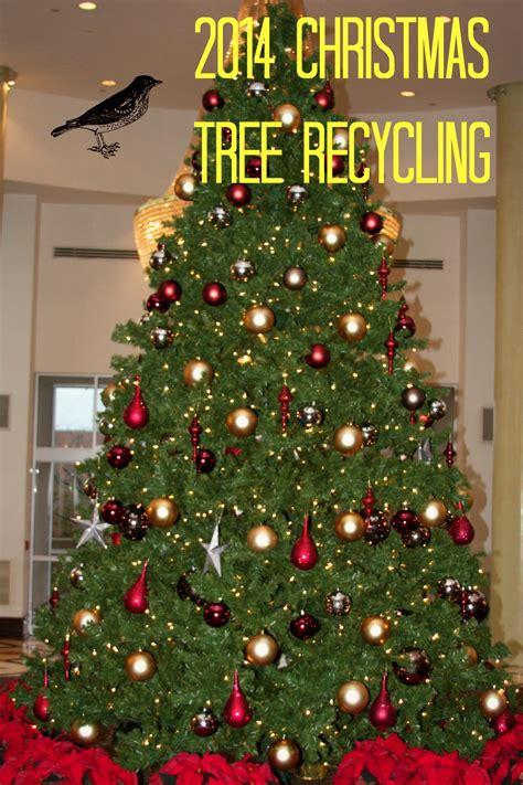 philadelphia christmas tree disposal christmas lights