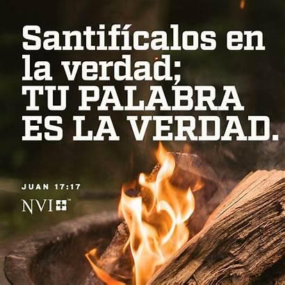 Juan Biblia Dios Ama Te Harpercollinschristian Guardado
