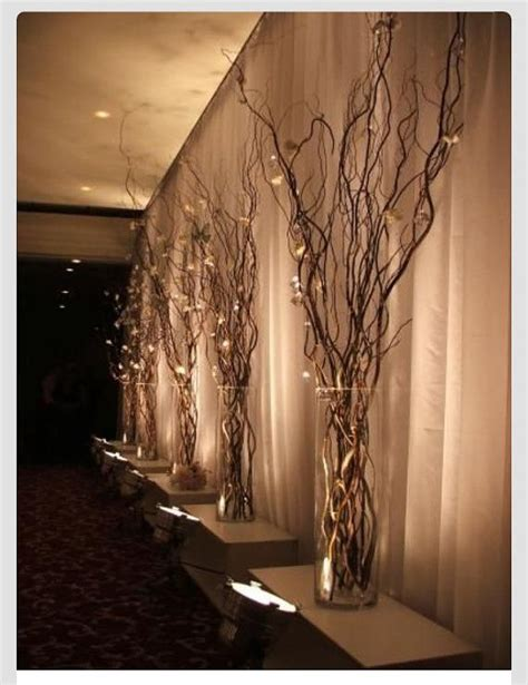 lighted tree branches