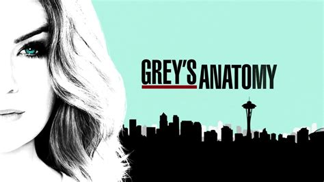 greys anatomy  tv show shonda rhimes waatchco