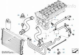 Diagram  1995 Ford Mustang Gt Cobra Service Shop Manual