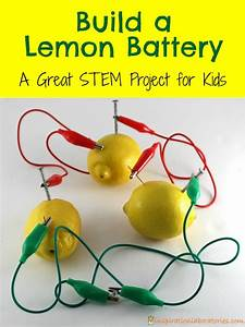 Build A Lemon Battery