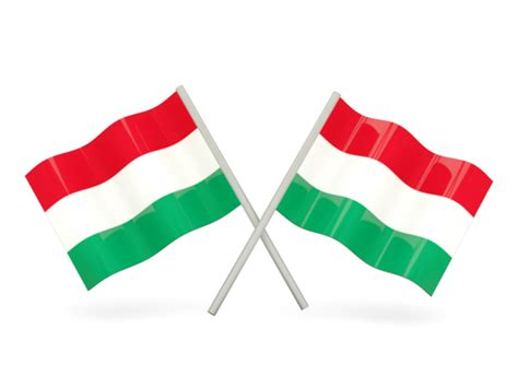 Two wavy flags. Illustration of flag of Hungary