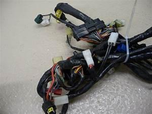 2005 Yamaha Fjr 1300 C Main Wiring Harness