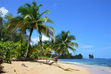 bocas del toro panama s island paradise travel intense