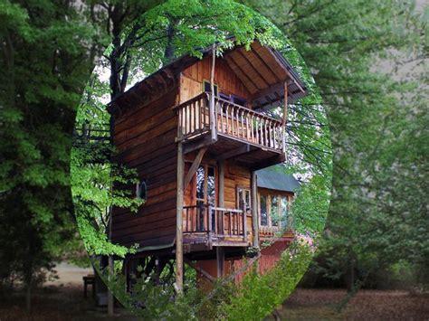 Sycamore Avenue Treehouses, Mooi River