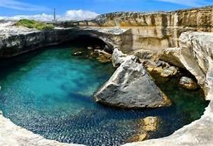 Cout Piscine Naturelle. piscine naturelle co t d entretien aspect ...