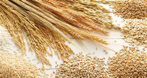 cuisiner le millet céréales les flocons de céréales bons pour la santé