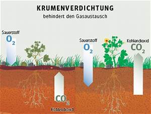 Boden Ph Wert Messen : ph wert regenwasser ph werte und redoxpotential bei elektrolyse durch selbstbau ~ Orissabook.com Haus und Dekorationen