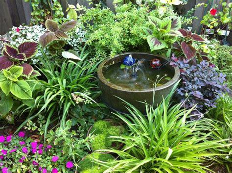 shady garden corner shade loving plants