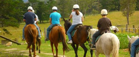 riding lessons horse horseback cost much local less bring