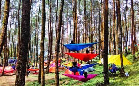 rindang  sejuknya  hutan wisata  indonesia bikin betah