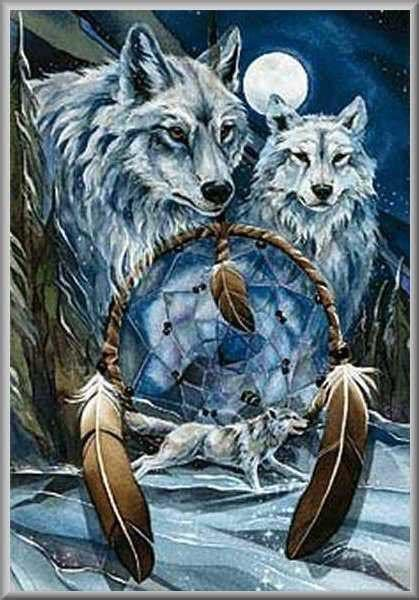 wolf dream catcher wallpaper  wallpapersafari