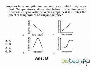Solved  Enzymes Have An Optimum Temperature At Which They