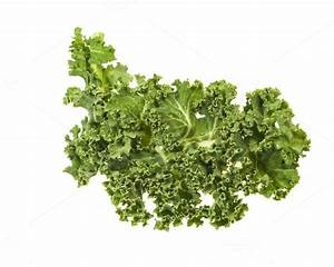Curly kale leaves isolated ~ Food & Drink Photos on ...