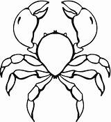 Crab Coloring Printable Coloringpages101 Animalplace sketch template