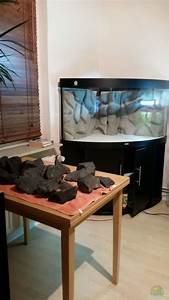 Juwel Trigon 350 : aquarium malawi juwel trigon 350 aus malawi juwel trigon 350 von gunnar2060 ~ Frokenaadalensverden.com Haus und Dekorationen