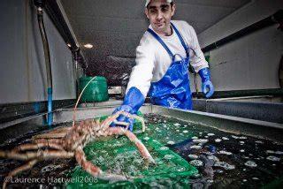 Through The Gaps!  Newlyn Fishing News Inside A