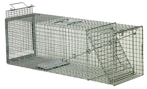live trap cat humane live animal traps wildlife trapping