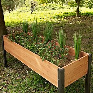 Vegetable, Garden, Raised, Patio, Backyard, Planters, Magnificent, Elevated, Outdoor, Planter, Boxes, For