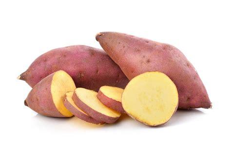 cuisiner patate douce tout sur la patate douce la choisir la cuisiner la conserver