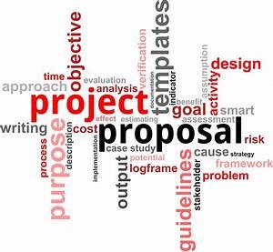 Professional proposal