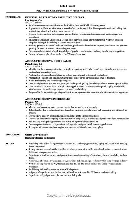 Resume For Sle by Professional Inside Sales Resume Exles Sales Executive