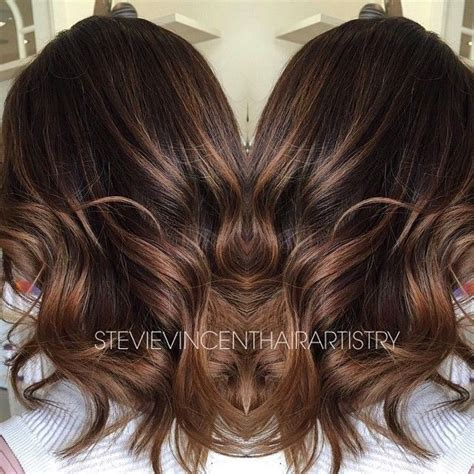 4n hair color 1000 images about chi ionic hair color on