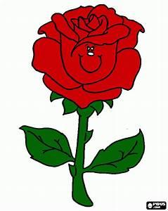 rosa vermelha para imprimir , desenho rosa vermelha