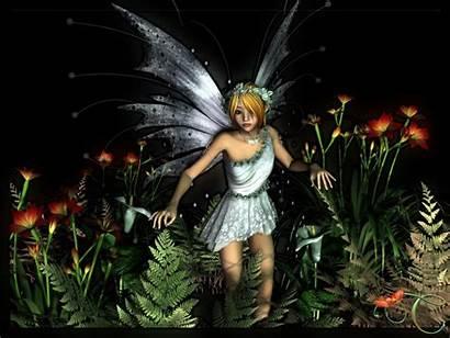 Fairy Fairies 3d Wallpapers Magical Angels Jungle