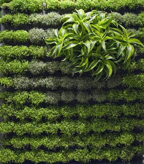 Vertical Garden Designs by Applicative Vertical Garden Designs Iroonie