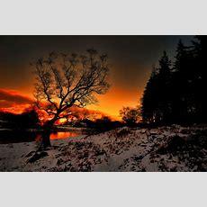 Sonnenuntergang An Einem Frostigen Abend Widescreen