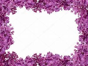 Bilder Mit Weißem Rahmen : rahmen aus blumen von einem flieder auf wei em hintergrund stockfoto 18618201 ~ Indierocktalk.com Haus und Dekorationen