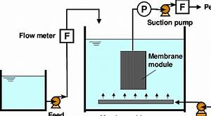 Schematic Diagram Of Membrane Bioreactor Using Non