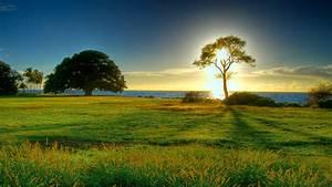 Natural Sunset HD Wallpaper