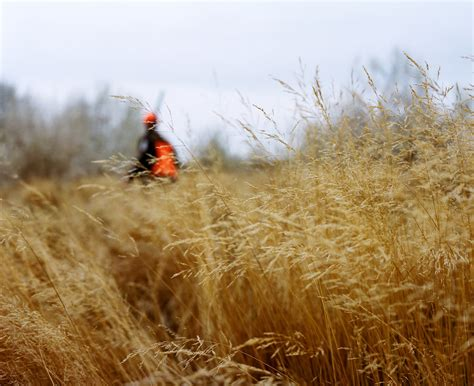 filson upland bird hunting elias carlson photography
