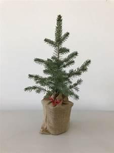 Pflanzen Günstig Kaufen : pflanzen werbegeschenke g nstig kaufen ~ A.2002-acura-tl-radio.info Haus und Dekorationen