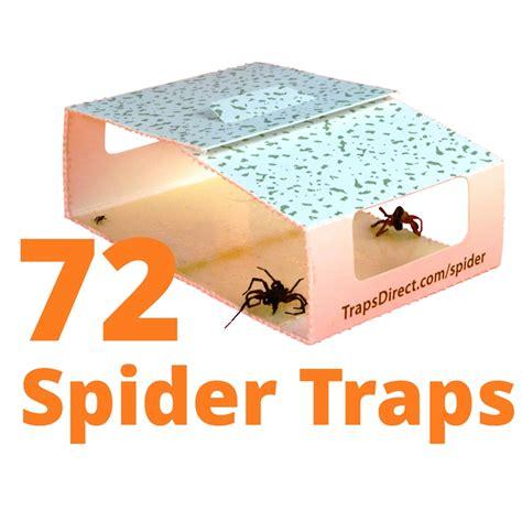 design a deck free simple green spider trap revised design still safe for