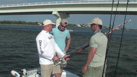 grouper bass hockey largemouth goliath