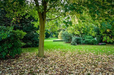 Garten Im Herbst Zurückschneiden by Beebleblox Herbst Im Garten Der Toten