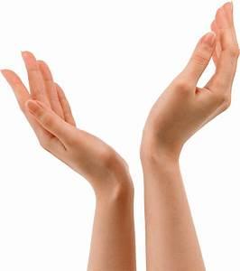 Hands Holding Png | www.pixshark.com - Images Galleries ...