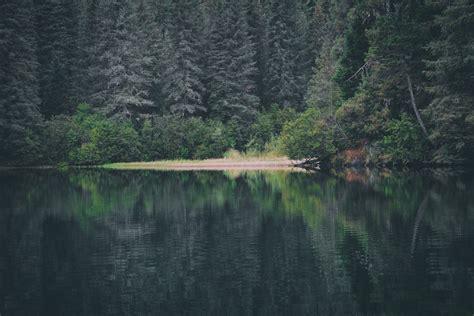 passerelle bureau à distance sentiers du lac en coeur dans lanaudière